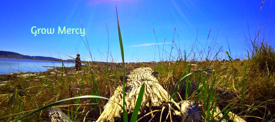 Grow Mercy