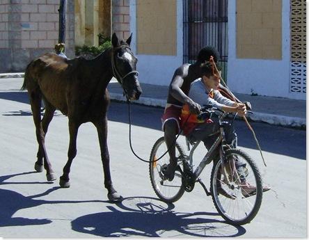 boybicyclehorse
