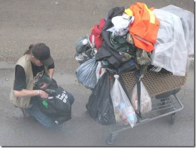 loaded shopping cart(sm)
