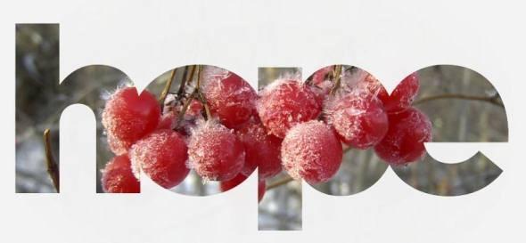 new_frost_berries(blog)