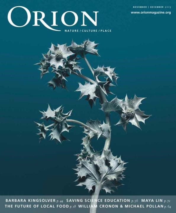 orion nov-dec