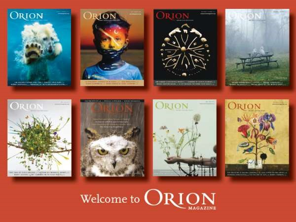 orion_covers